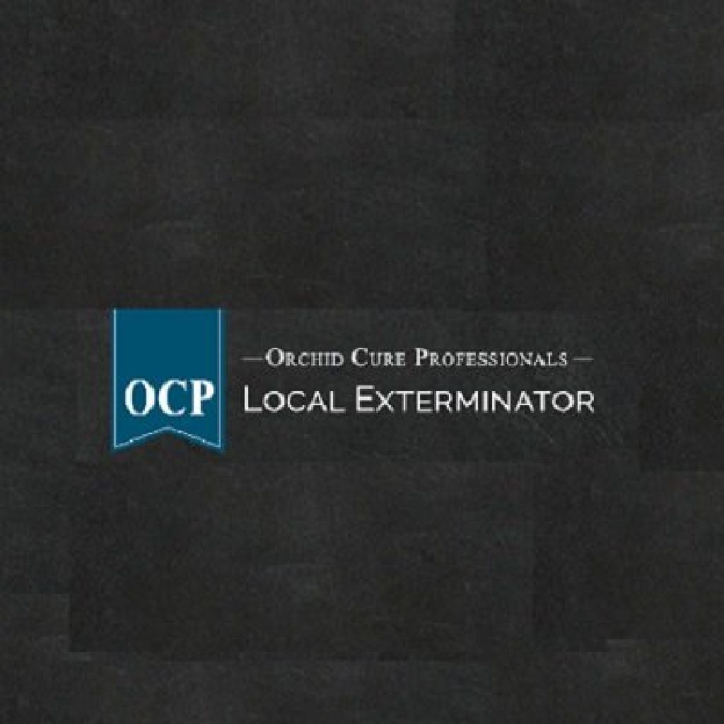 Ocp Bed Bug Exterminator Nyc Bed Bug Removal New York City Claz Org