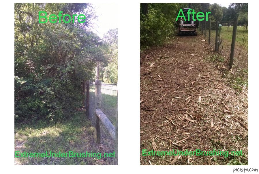 Under Brush Mulching Amp Land Clearing Claz Org
