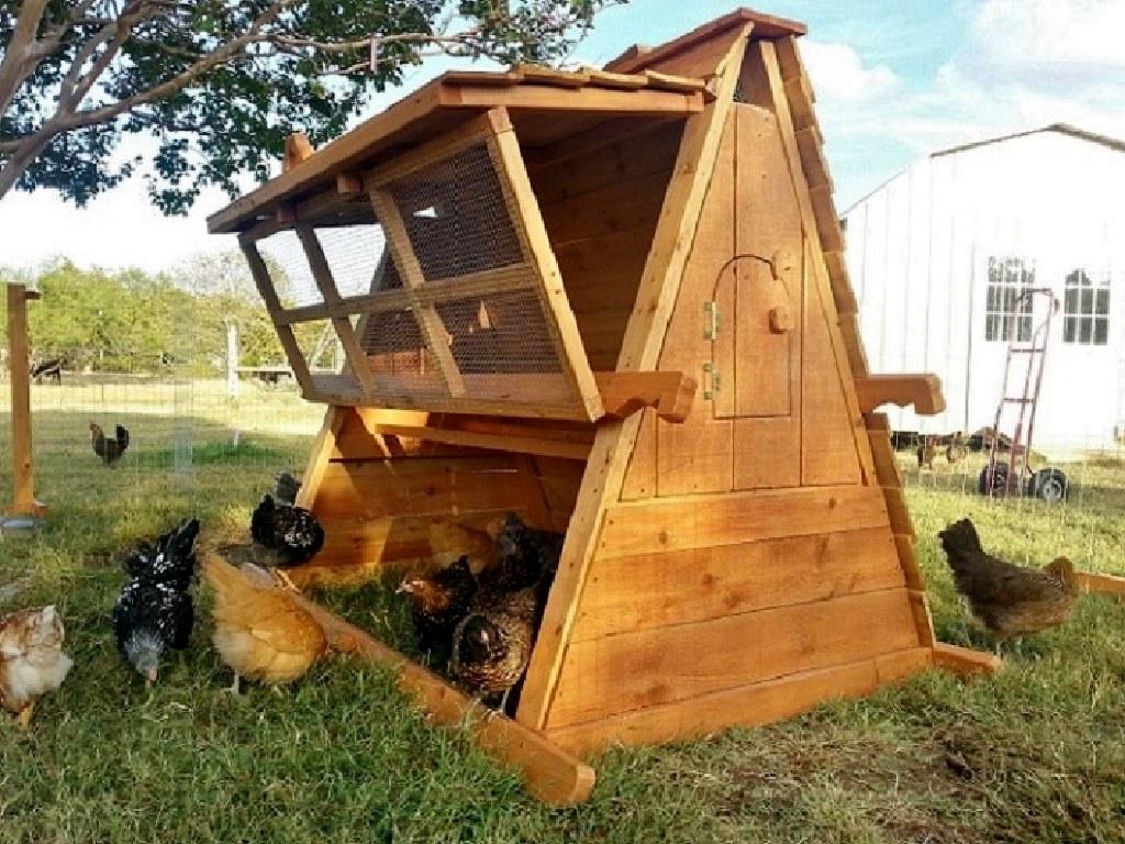 chicken coop for 5 chickens trendy the best chicken coop ever so