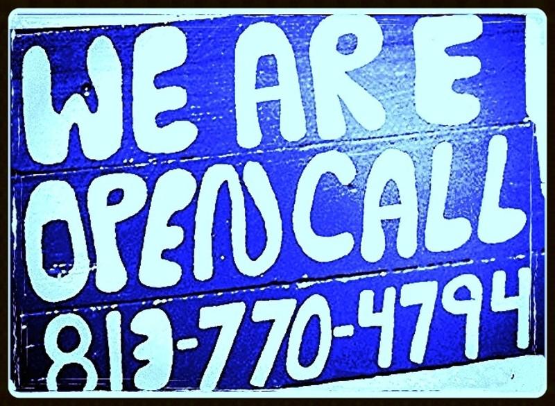 Famous Tampa Artist,Tampa Artist,Tampa Famous Artist