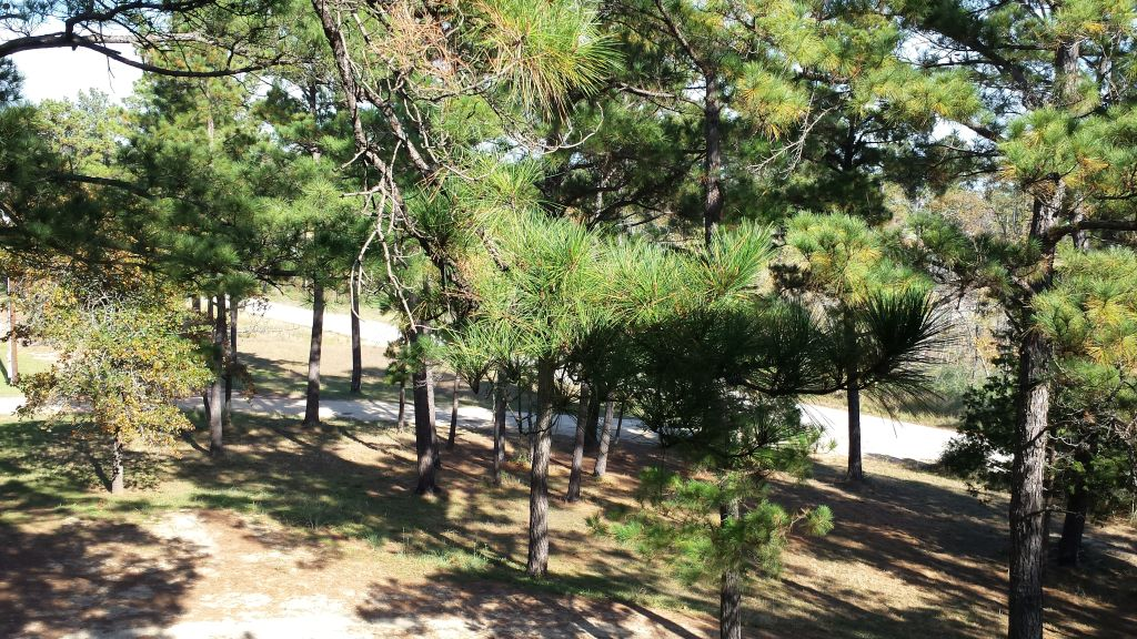 Beautiful Apartment 3A for rent in Bastrop