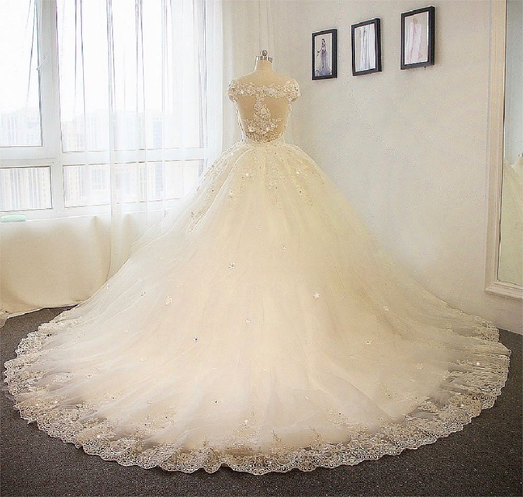 Darby's Princess Long Sleeve Lace Wedding Gown