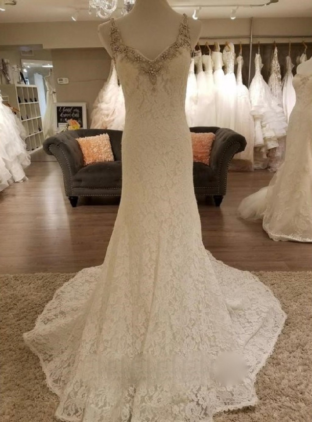 Tara's Sheath Lace Wedding Dress