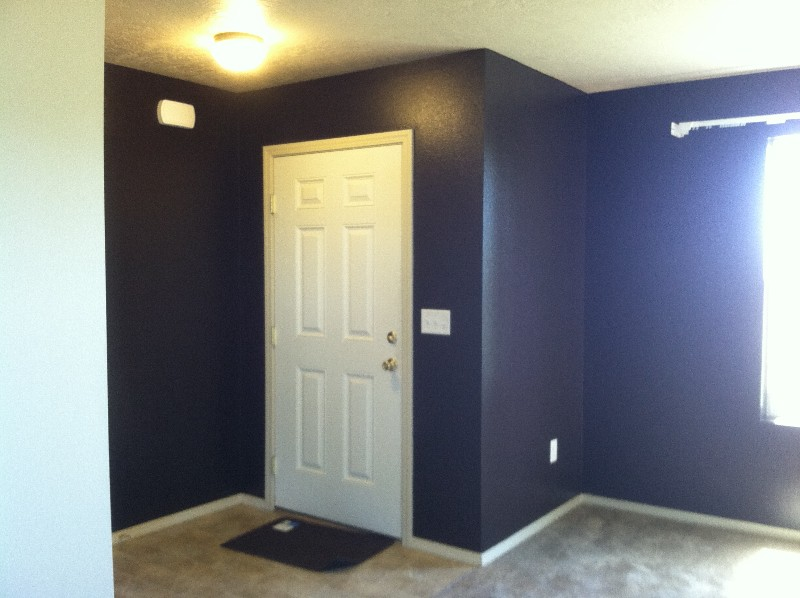 Interior & Exterior Painting - Deck & Fence Staining --- (208)703-1832