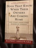 Dogs That Know When Their Owners Are Coming Home Book