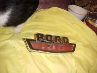 Sell 1964 Ford PU F-100 4 X 4 Side of Hood Trim FORD F-100 C4TB-16A652-5 motorcycle in Vancouver, Washington, United States, for US $32.00