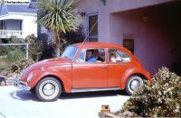 [WTB] Looking for A Certain Ruby Red 1965 Beetle