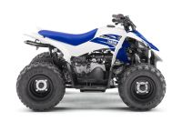 2018 Yamaha YFZ50 Sport ATVs Johnson City, TN