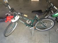 Adult Bicycles