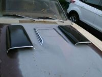 Purchase OEM Super Bee Hood Scoops motorcycle in Colfax, Wisconsin, United States, for US $299.99