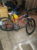 Giant Boulder SE Mountain Bike