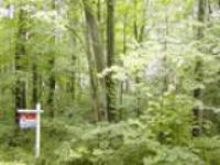 Looking for a Wooded Home Site