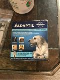 Dog plug in Calming and comfort at home