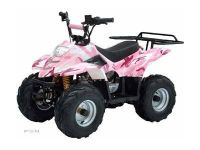 2012 Taotao USA ATA-110B3 Kids ATVs Dearborn Heights, MI