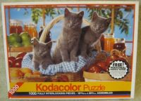 1000 Piece Jigsaw Puzzle with Kittens