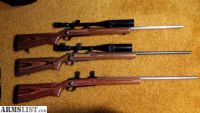 For Sale: Ruger M77 MKII rifles