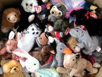 Pets Charity Auction Beanie Baby Collection
