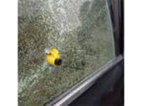 Auto Safety Hammer Belt Window Breaker Tool Emergency SHTF