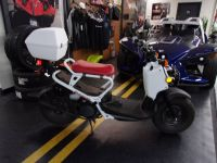 2016 Honda Ruckus 250 - 500cc Scooters Philadelphia, PA