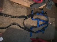 safty harness and shock absorbing Lantern