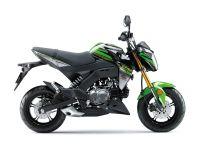 2018 Kawasaki Z125 Pro KRT Edition Sport Motorcycles North Reading, MA