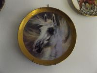 """The Arabian"""" by HARLAND YOUNG 1980 collectors plate"""