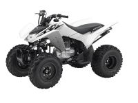 2016 Honda TRX250X Sport ATVs Long Island City, NY