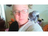 AFRICAN GRAY PARROT, MALE, OVER 300 WORD ...