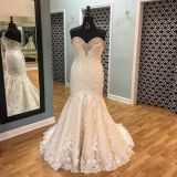 Trisha's Mermaid Strapless Lace Wedding Gown