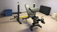 Golds gym weight bench & weights