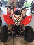 2017 Honda TRX250X Special Edition Sport ATVs Troy, OH