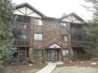Foreclosure - Lakeside Pl # 201b, Tinley Park IL 60477