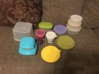 Lg Lot Containers w/ Lids except one Swap Only