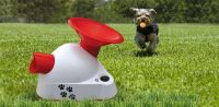 NEW Automatic Talking Dog Ball Throw Launcher