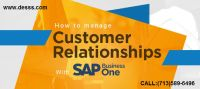 SAP Customer Relationship Management Consulting