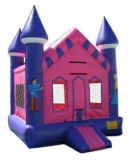 Bounce house inflatables and more (Cen tex)