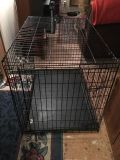 Large Heavy Duty Dog crate