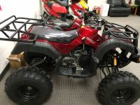 2017 Peace Sports TPATV 03 Utility ATVs Norcross, GA