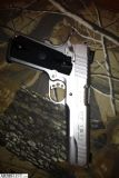 For Sale: Stainless 1911