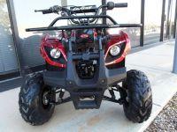 2017 - Moto X ATV 125 Red Spider