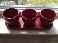 3 Plant Planting Pot with Attached Tray
