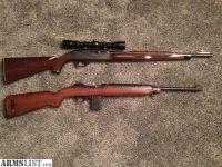 For Sale/Trade: Remington nylon 66 , m1 carbine