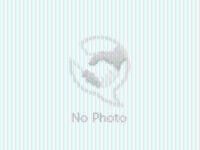 PSX Letter N Flower Botanical Rubber Stamp F1113