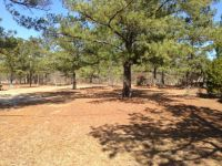 Owner Financing...Beautiful Mobile Home Lot