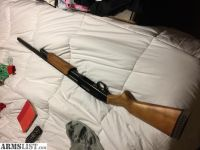 For Sale: Mossberg golden trigger