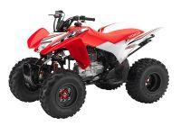 2017 Honda TRX250X Special Edition Sport ATVs Mentor, OH