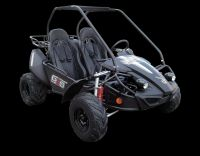 2017 Hammerhead Off-Road GTS 150 Competition/Off Road Go-Karts Woodstock, IL