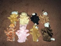 Eight cute puppets Lion, dog, cat, giraffe, tiger, pig, bear, and horse. Quite the menagerie!! Gallatin unless going to H ville. Excellent .