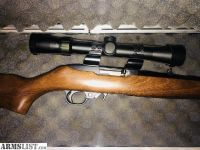 For Sale/Trade: Ruger 10-22 real wood stock