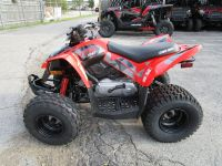 2018 Can-Am DS 90 Kids ATVs Brookfield, WI